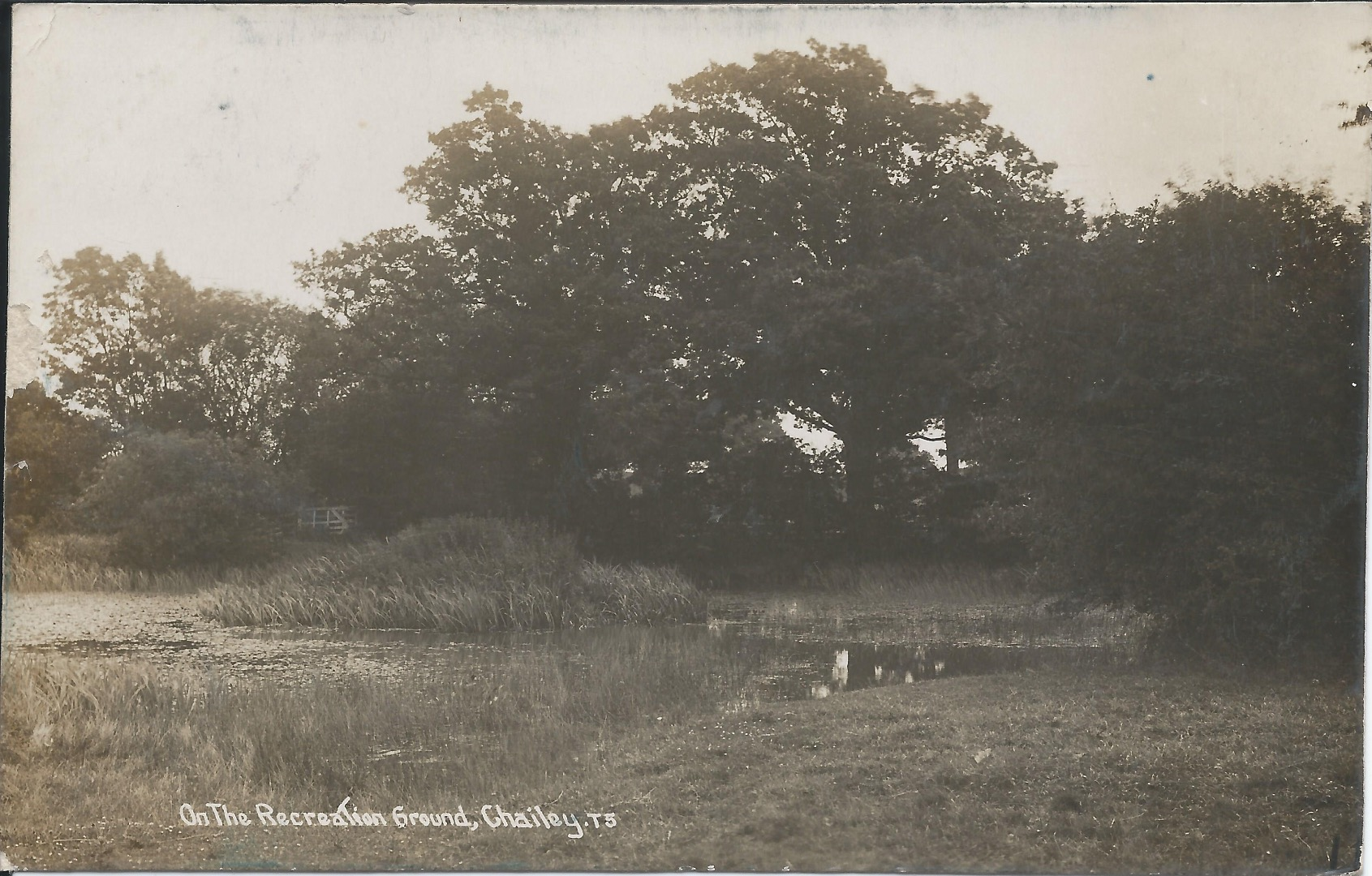 Pond at Roeheath 1913